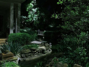 Garden landscape lighting services dfw creative nightscapes for Garden design landscaping dallas tx