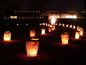 LED pathway lights that look like stones