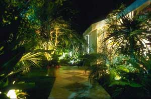 Well-lit walkway surrounded by plants.
