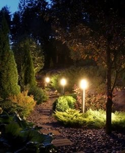 A pathway through lush landscaping is illuuminated by LED lighting
