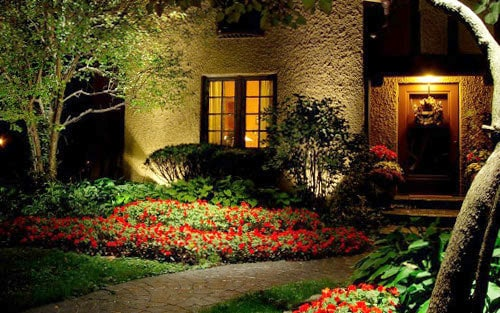 Red flowers line a home